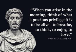 Did the Stoics Really Say That? By Thomas Colligan ...